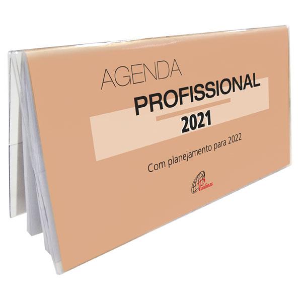 Agenda profissional 2021 - com planejamento para 2022