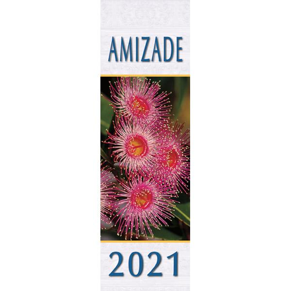 Calendário da amizade 2021