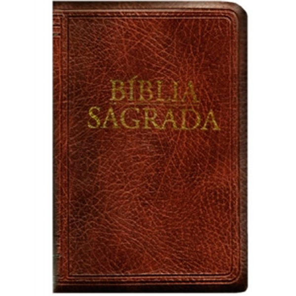 Bíblia Sagrada - Nova tradução na linguagem de hoje (média - zíper marrom)