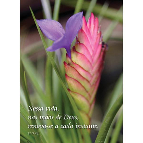 Esperança 90 - Salmos 103